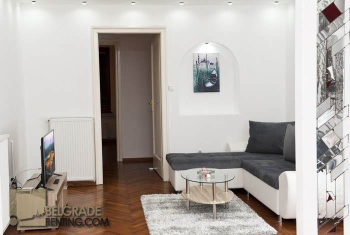 Comfortable living room  - Apartment Cubina Belgrade