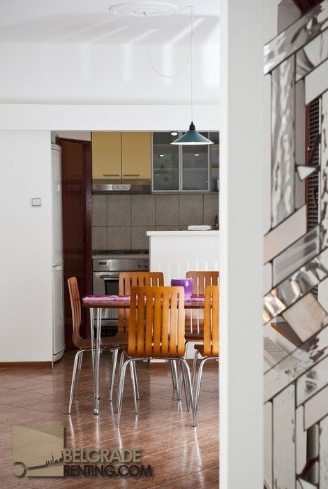 View on the kitchen - Apartment Cubina Belgrade
